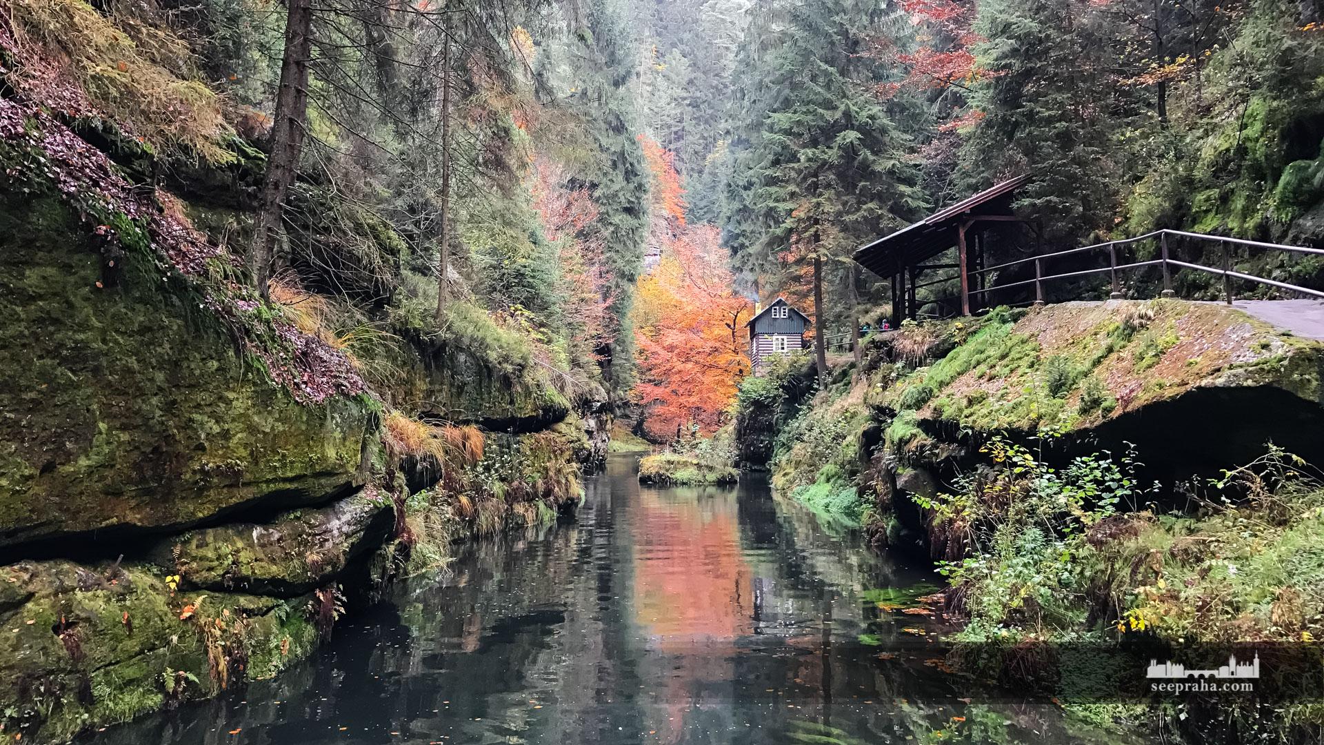 Картинки швейцария парки, открыток картинка надписью
